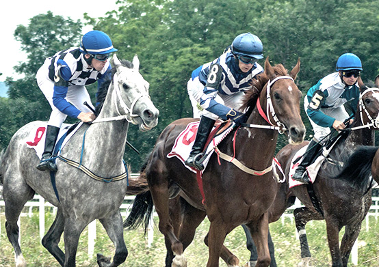 Horse Racing at South Beach Hotel Christ Church, Barbados